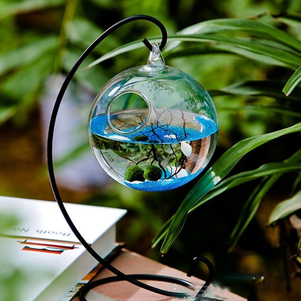 Marimo Aquarium Kit (Metal Stand)