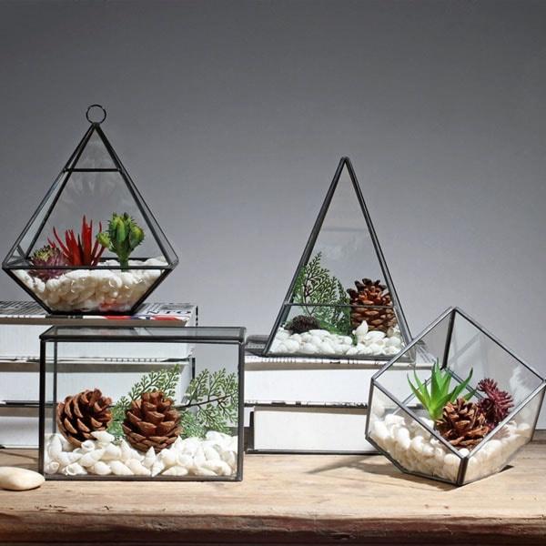 Nordic Glass Terrarium Apollobox