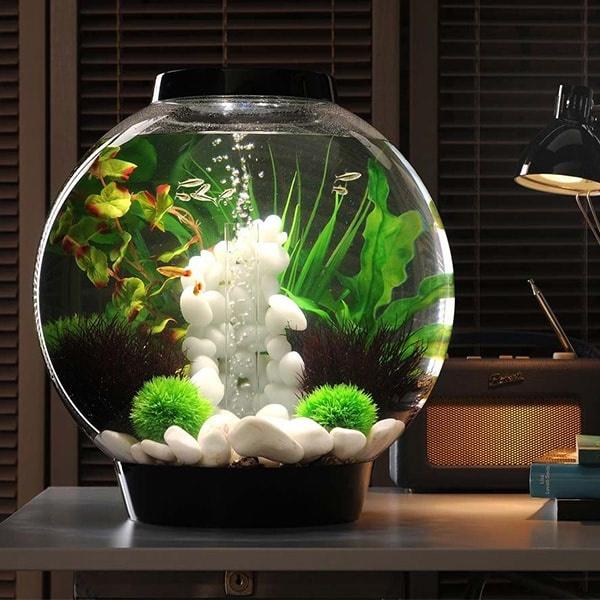 BiOrb 30小鱼缸