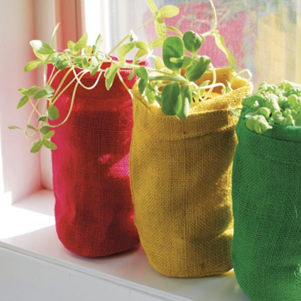 plant gifts`