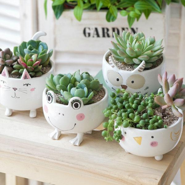Cute Ceramic Animal Planter from Apollo Box